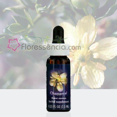 Chaparral - 7,5 ml  - Floressência