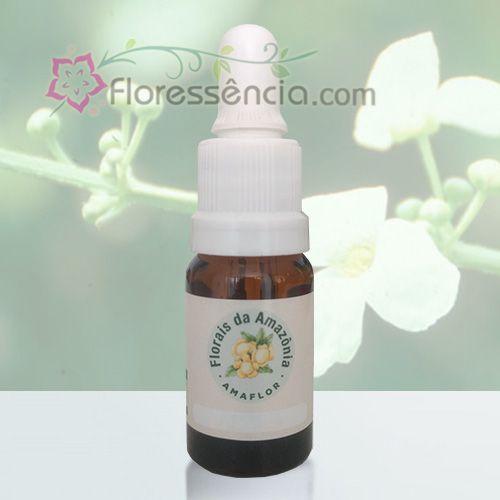Chapéu de Couro - 10 ml  - Floressência