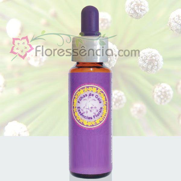 Chuveirinho - 10 ml  - Floressência