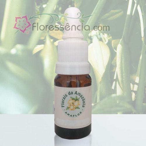 Cipó Imbé - 10 ml  - Floressência