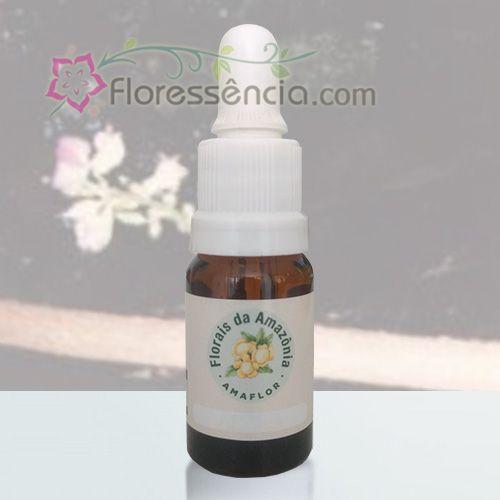 Cipó Imperial - 10 ml  - Floressência