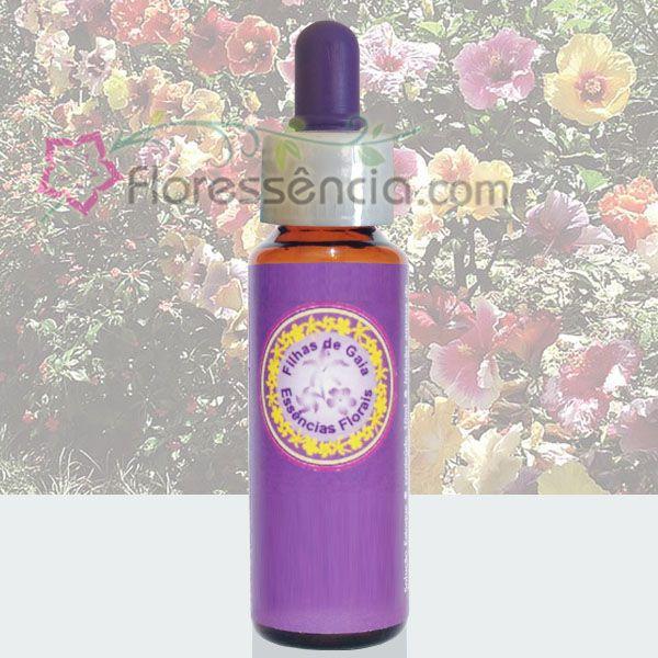 Círculo de Hibiscus - 10 ml  - Floressência