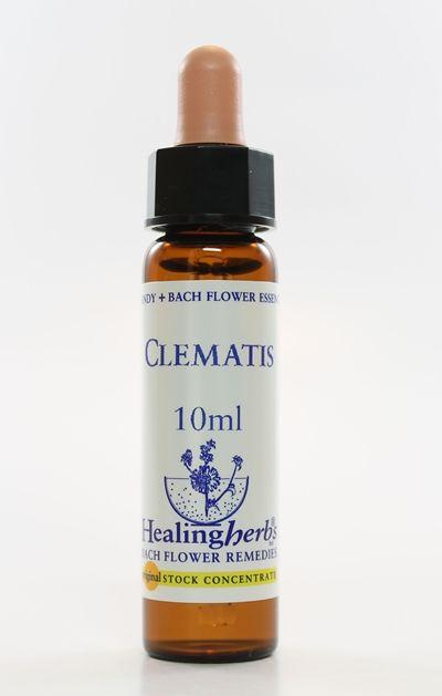 Clematis - 10 ml  - Floressência