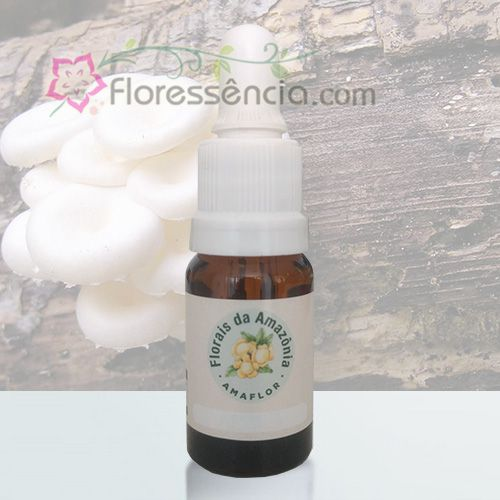Clysthium - 10 ml  - Floressência
