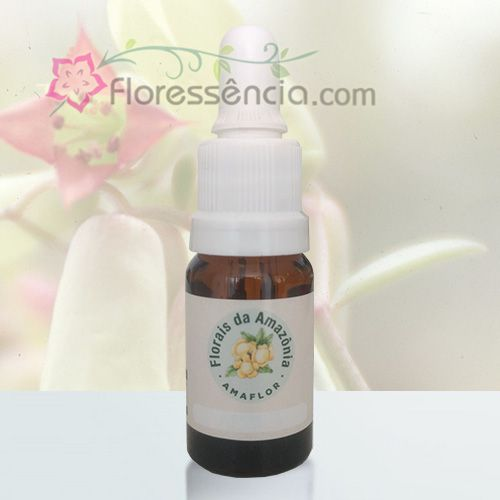 Coeirama - 10 ml  - Floressência