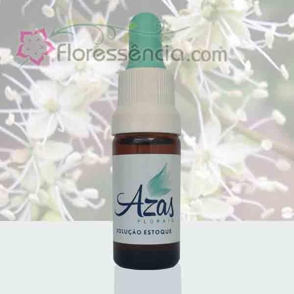 Copaíba - 10 ml  - Floressência