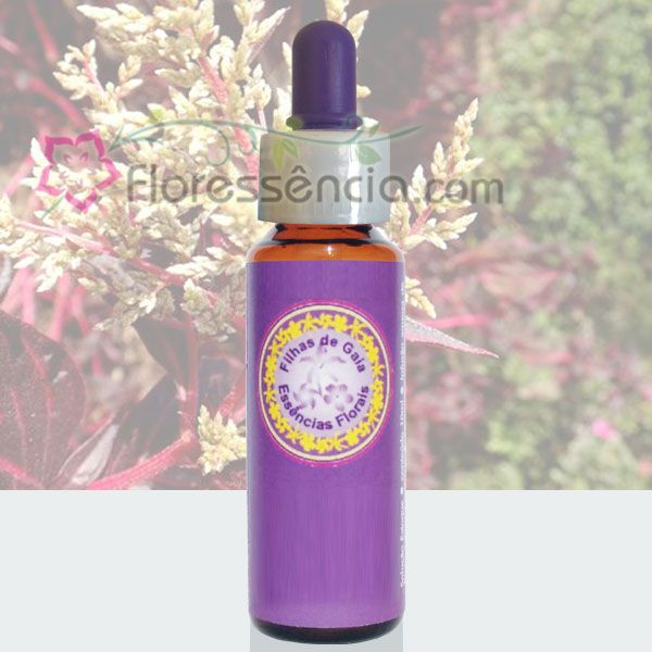 Coração de Mãe - 10 ml  - Floressência