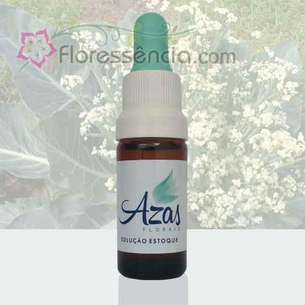 Couve-Flor - 10 ml  - Floressência