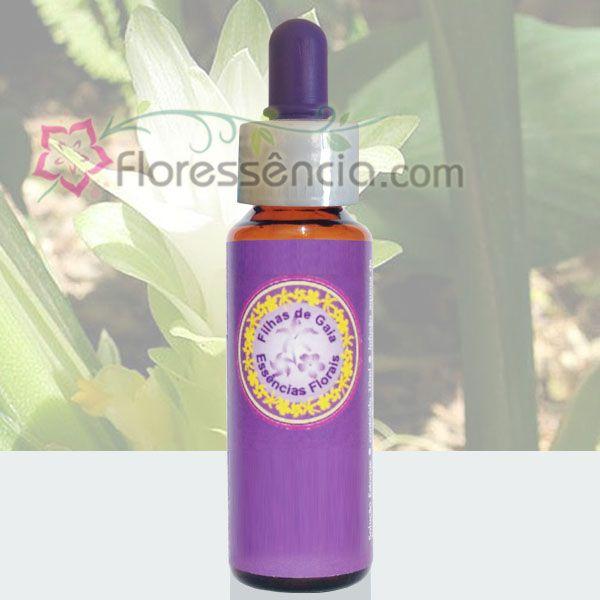 Cúrcuma - 10 ml  - Floressência