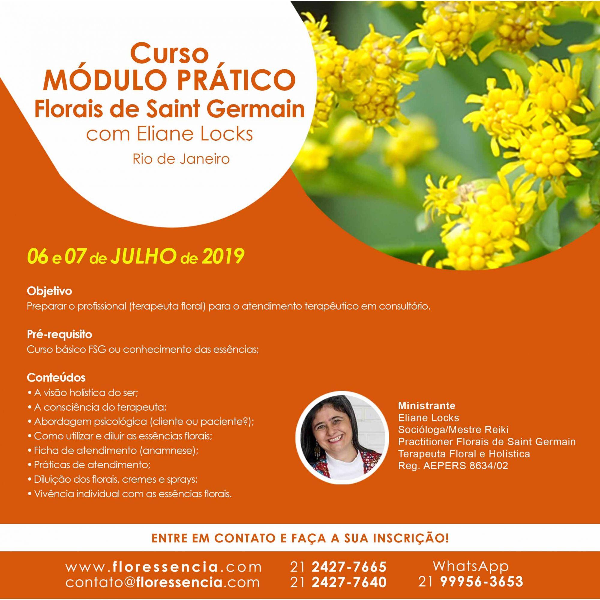 Curso PRESENCIAL MÓDULO PRÁTICO FLORAIS DE SAINT GERMAIN com Eliane Locks  - Floressência