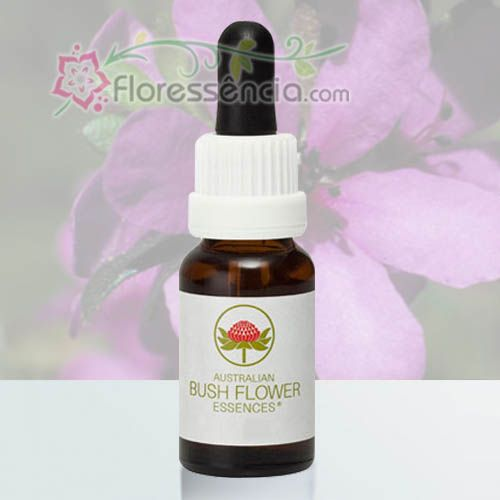Dog Rose of the Wild Forces - 15 ml  - Floressência