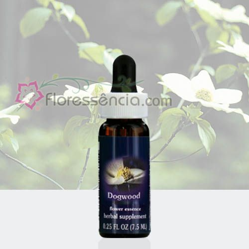 Dogwood - 7,5 ml  - Floressência