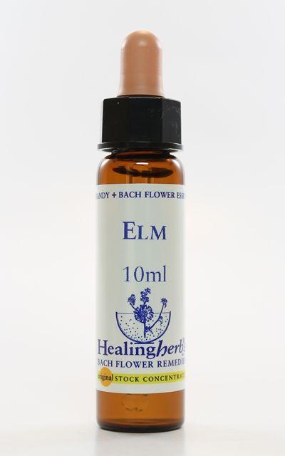 Elm - 10 ml  - Floressência