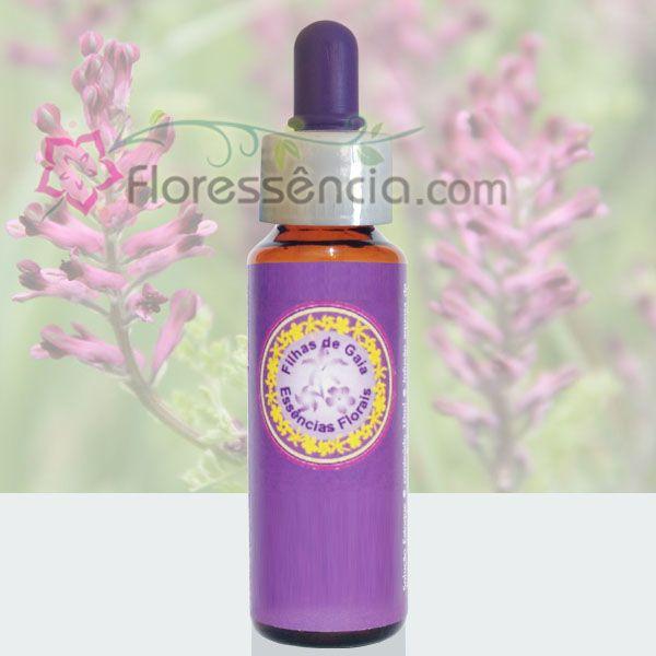 Espada de Luz - 10 ml  - Floressência