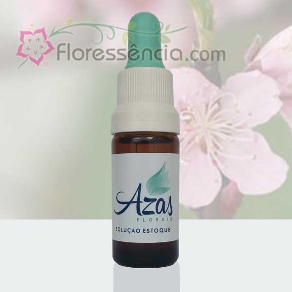 Esperança - 10 ml  - Floressência