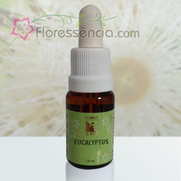 Eucalyptus - 10 ml  - Floressência