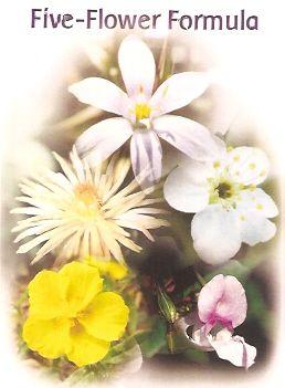 Five Flower Remedy - 30 ml  - Floressência