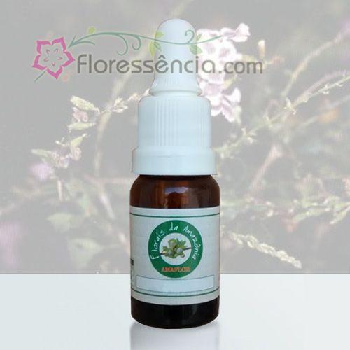 Flor de Janeiro - 10 ml  - Floressência