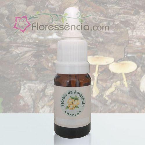 Flor de Pau Amarela - 10 ml  - Floressência