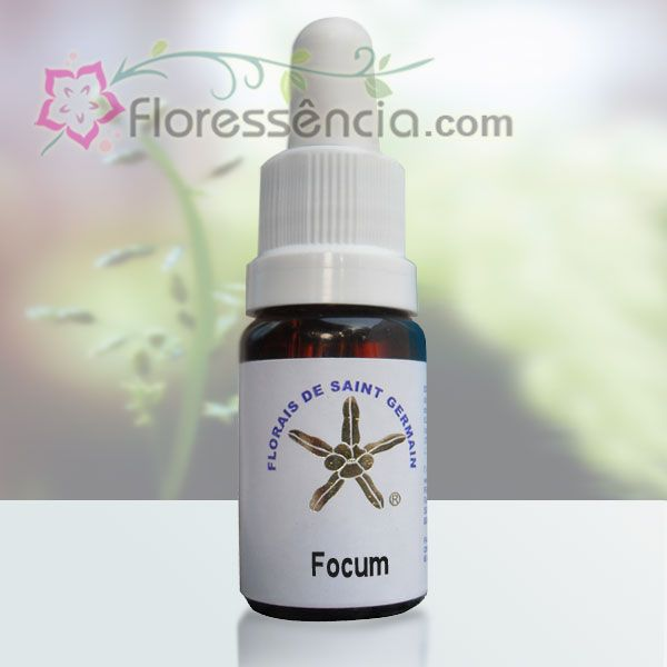 Focum - 10 ml  - Floressência