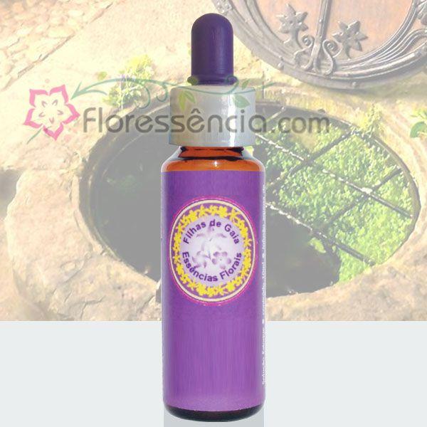 Fonte do Cálice - 10 ml  - Floressência