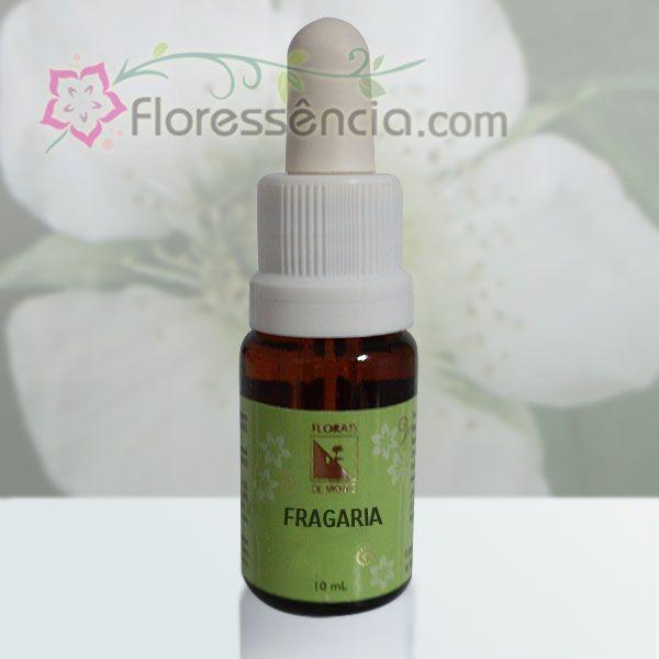 Fragaria - 10 ml  - Floressência