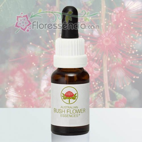 Freshwater Mangrove - 15 ml  - Floressência
