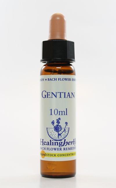 Gentian - 10 ml  - Floressência