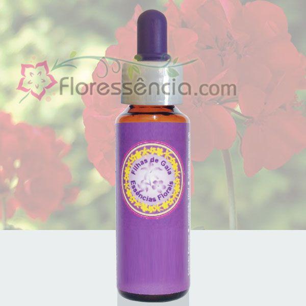 Gerânio Vermelho - 10 ml  - Floressência