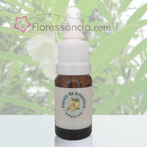 Gergelim - 10 ml  - Floressência