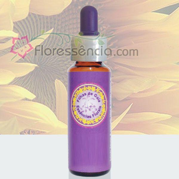 Girassol - 10 ml  - Floressência