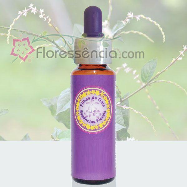 Guiné - 10 ml  - Floressência