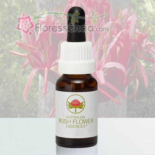 Gymea Lily - 15 ml  - Floressência