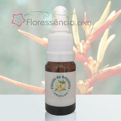 Helicônia - 10 ml  - Floressência