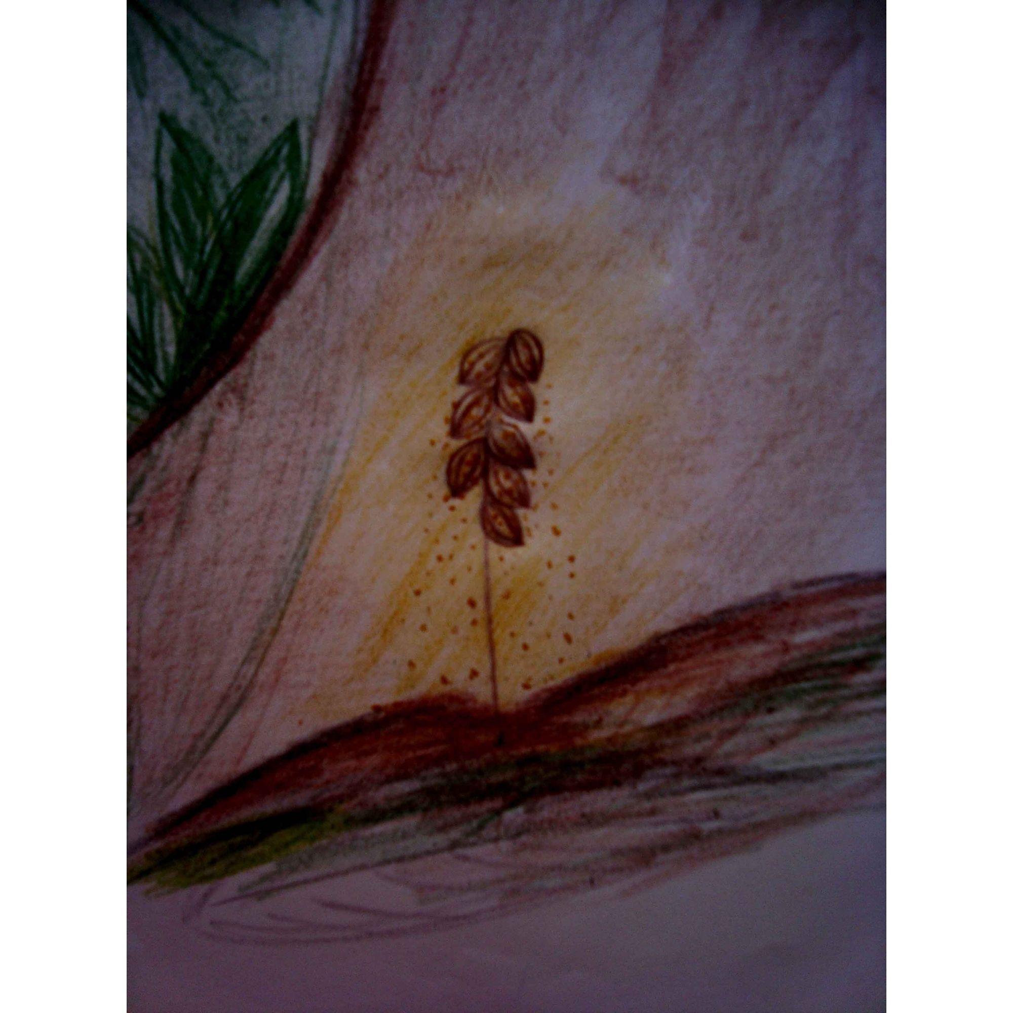 Hipolila - 10 ml  - Floressência