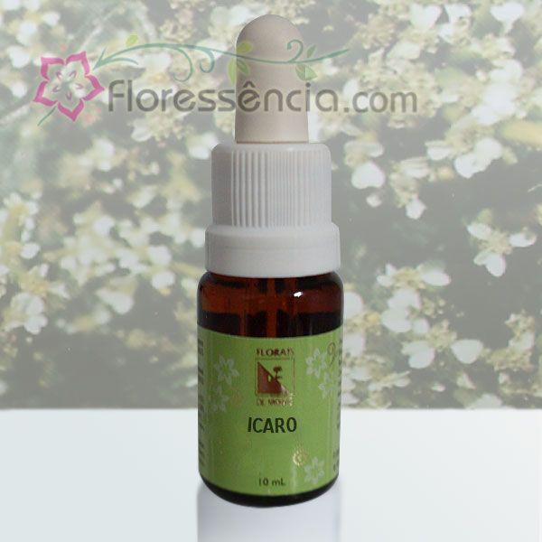 Icaro - 10 ml  - Floressência