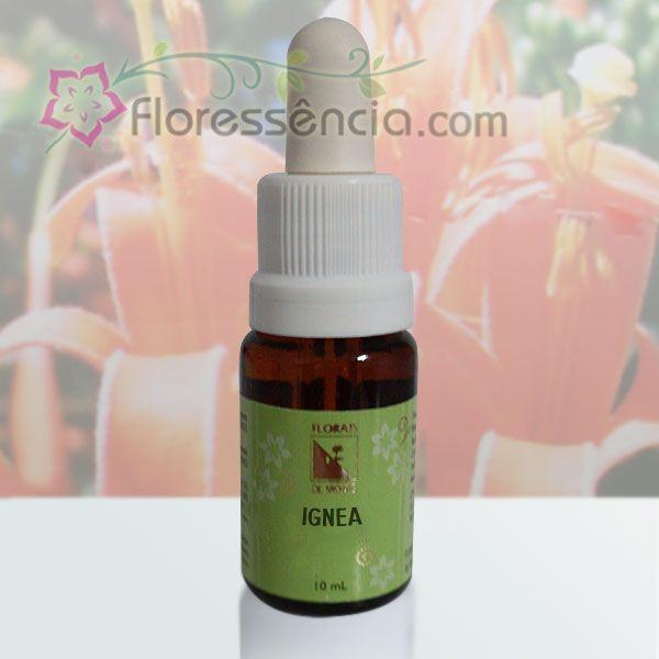 Ignea - 10 ml  - Floressência