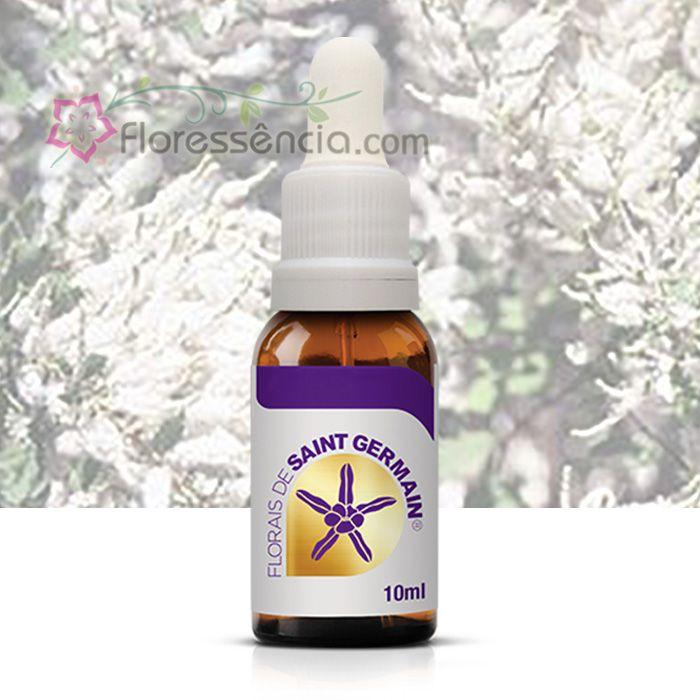 Incensum - 10 ml  - Floressência