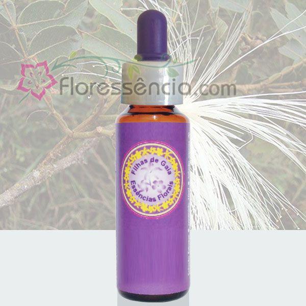 Ingá - Filhas de Gaia - 10 ml  - Floressência