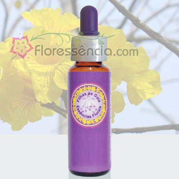 Ipê Amarelo - 10 ml  - Floressência