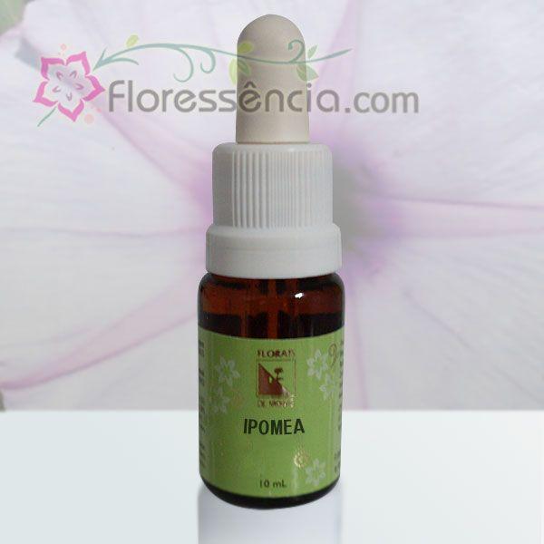 Ipomea - 10 ml  - Floressência