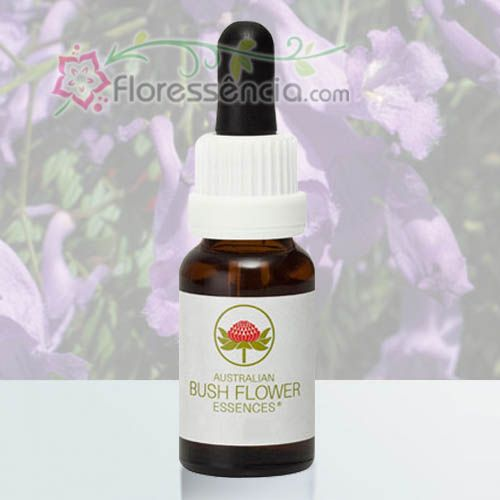 Jacaranda - 15 ml  - Floressência
