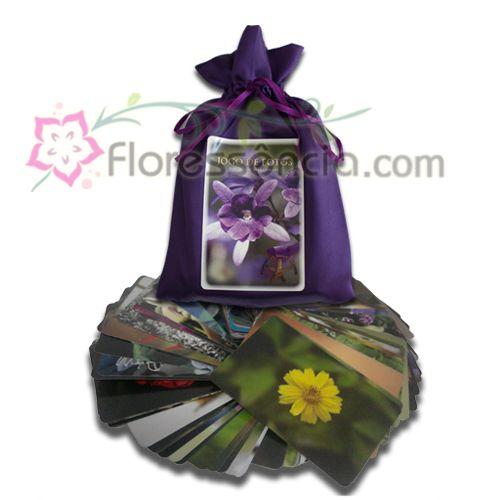 Jogo de Cartões Fotográficos das Flores (completo)  - Floressência
