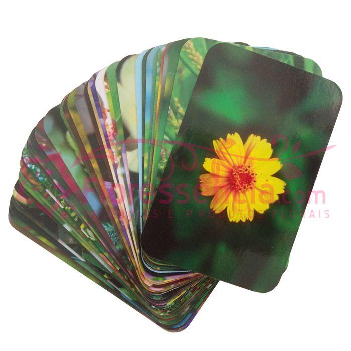 Jogo de Fotos das Flores - Florais de Saint Germain  - Floressência