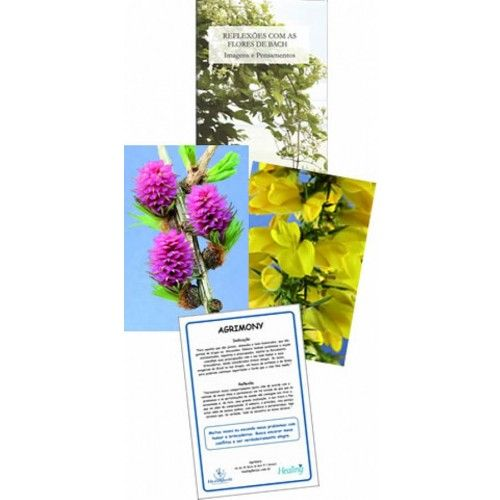 Kit de Cartões - Reflexões com Florais de Bach  - Floressência