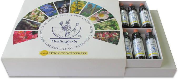 Kit Florais de Bach Healing Herbs- 40 Frascos - 10 ml  - Floressência