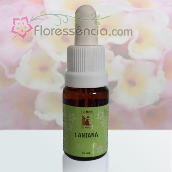 Lantana - 10 ml  - Floressência