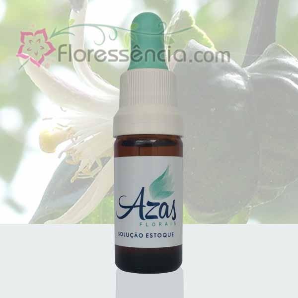 Limão - Azas Florais - 10 ml  - Floressência