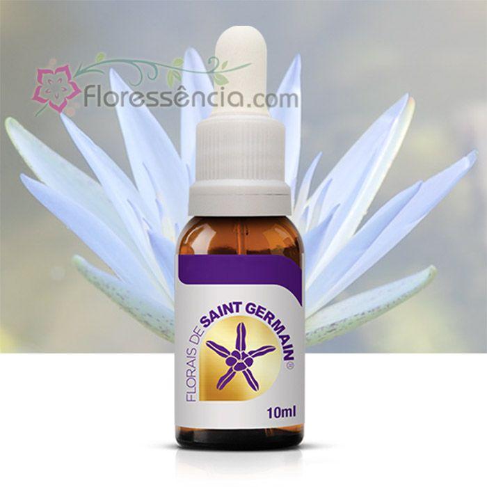 Lótus Azul - 10 ml  - Floressência