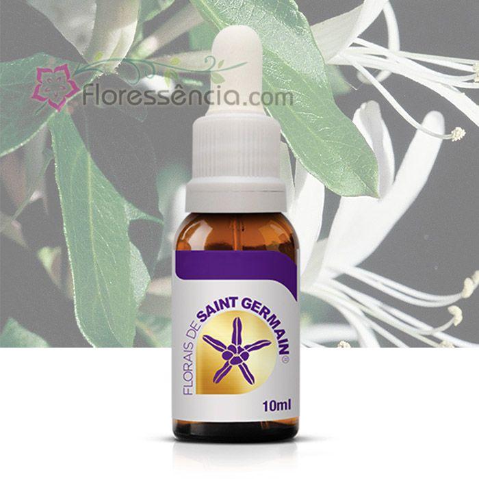 Madressilva SG - 10 ml  - Floressência